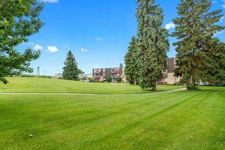 Photo 8: 17B 80 Galbraith Drive SW in Calgary: Glamorgan Apartment for sale : MLS®# A1009732