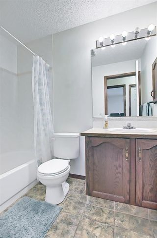 Photo 20: 279 Coral Springs Circle NE in Calgary: Coral Springs Detached for sale : MLS®# A1083552