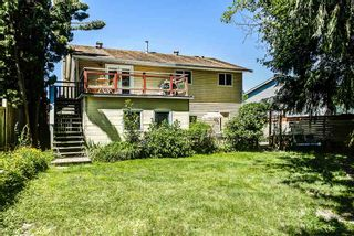 Photo 14: 22521 KENDRICK Loop in Maple Ridge: East Central House for sale : MLS®# R2171951