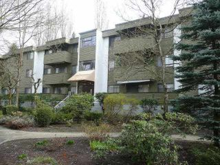 "Photo 2: 22 2432 WILSON Avenue in Port Coquitlam: Central Pt Coquitlam Condo for sale in ""ORCHARD VALLEY"" : MLS®# R2135637"