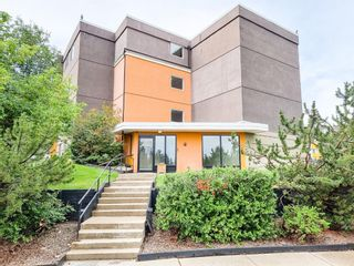 Photo 1: 305 4455C Greenview Drive NE in Calgary: Greenview Apartment for sale : MLS®# A1133635