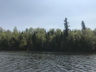 Photo 4: 4 Scott IS in Kenora: Vacant Land for sale : MLS®# TB191550