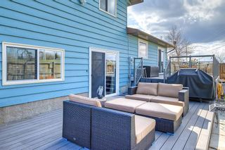 Photo 42: 420 Templeby Place NE in Calgary: Temple Detached for sale : MLS®# A1107183