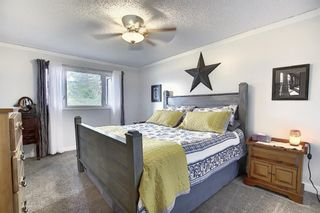 Photo 16: 1351 Idaho Street: Carstairs Detached for sale : MLS®# A1040858