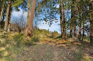 Photo 28: 418 Jayhawk Pl in : Hi Western Highlands House for sale (Highlands)  : MLS®# 865810