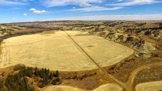Photo 9:  in Rural Stettler No. 6, County of: Rural Stettler County Agriculture for sale : MLS®# C4295199