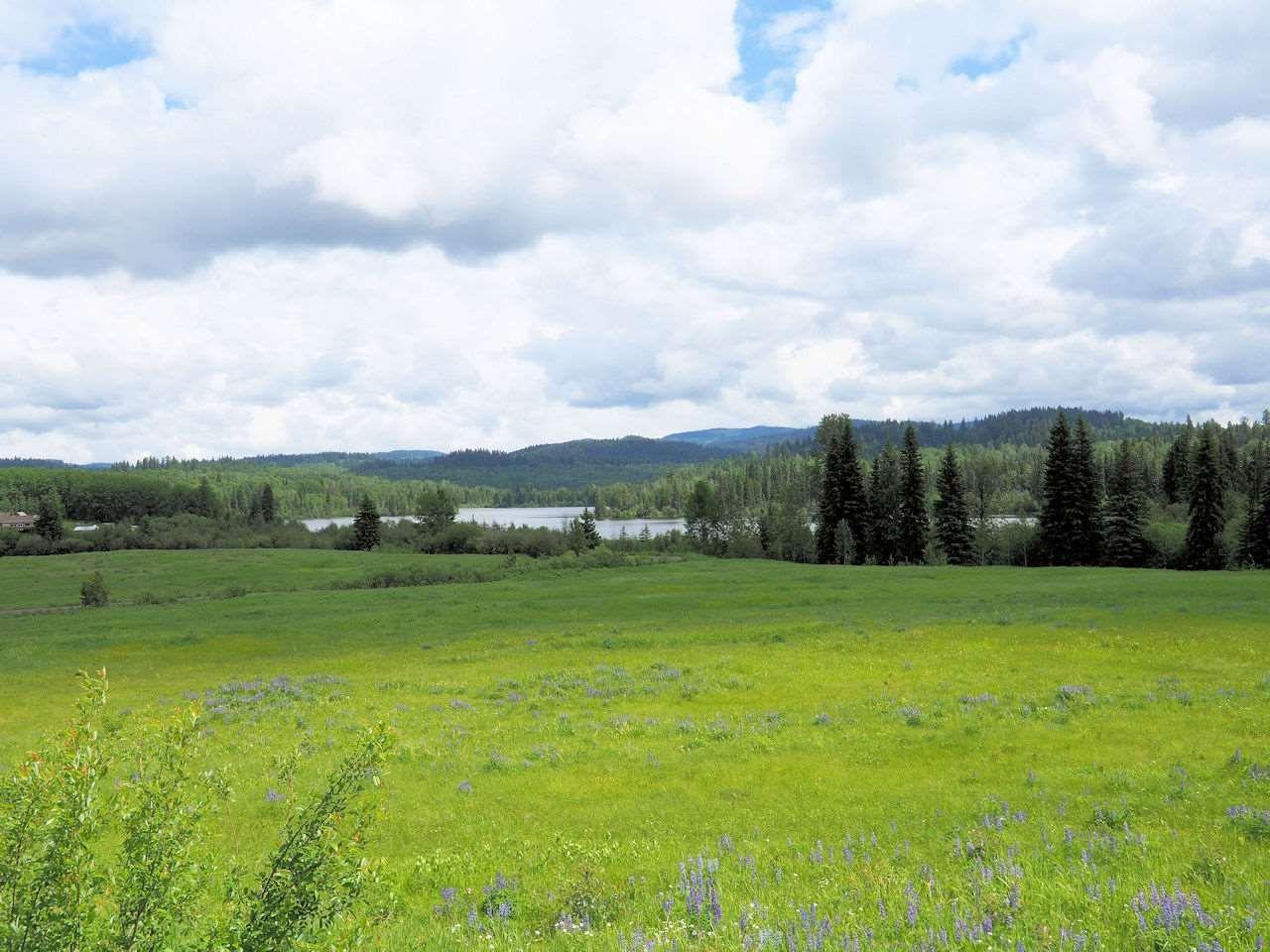 Main Photo: LOT 1 WILSON LAKE Road in Bridge Lake: Bridge Lake/Sheridan Lake Land for sale (100 Mile House (Zone 10))  : MLS®# R2462170