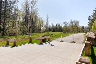 """Photo 26: 203 6500 194 Street in Surrey: Clayton Condo for sale in """"SUNSET GROVE"""" (Cloverdale)  : MLS®# R2569680"""