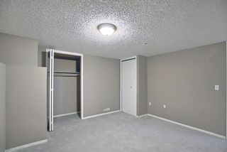 Photo 35: 379 Coventry Road NE in Calgary: Coventry Hills Detached for sale : MLS®# A1148465