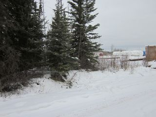 Photo 3: 8.6 Acres of Industrial land for sale