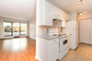 """Photo 8: 111 1195 PIPELINE Road in Coquitlam: New Horizons Condo for sale in """"DEERWOOD COURT"""" : MLS®# R2601284"""