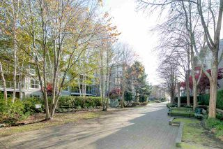 "Photo 15: 336 5700 ANDREWS Road in Richmond: Steveston South Condo for sale in ""RIVERS REACH"" : MLS®# R2417325"