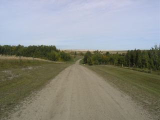 Photo 7: 242042 Township RD 264: Rural Wheatland County Detached for sale : MLS®# C4272839