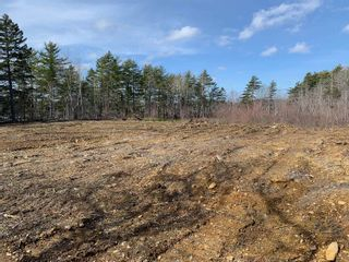 Photo 4: Lot E Hebb Road in Wileville: 405-Lunenburg County Vacant Land for sale (South Shore)  : MLS®# 202106726