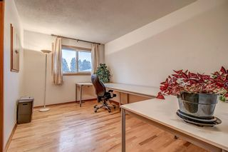 Photo 23: 3727 Underhill Place NW in Calgary: University Heights Detached for sale : MLS®# A1045664
