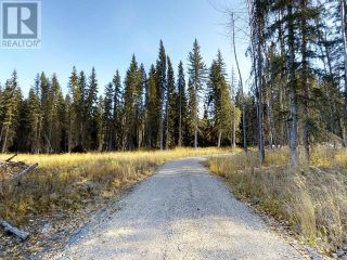 Photo 3: 53018 RANGE RD 175 in Rural Yellowhead County: Vacant Land for sale : MLS®# AW38443