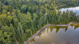 Photo 8: Lot 24 Five Point Island in South of Kenora: Vacant Land for sale : MLS®# TB212088