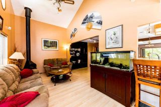Photo 7: 3715 CAMPBELL Avenue in North Vancouver: Lynn Valley House for sale : MLS®# R2382223