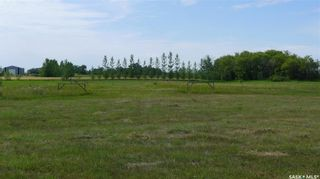 Photo 9: Mapes Acreage in Dundurn: Lot/Land for sale (Dundurn Rm No. 314)  : MLS®# SK821346