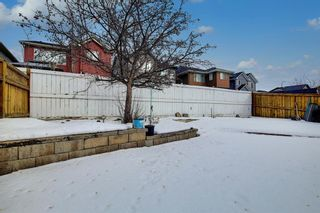 Photo 34: 54 Evanspark Terrace NW in Calgary: Evanston Residential for sale : MLS®# A1060196