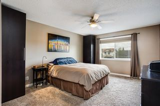 Photo 18: 186 Thornleigh Close SE: Airdrie Detached for sale : MLS®# A1117780