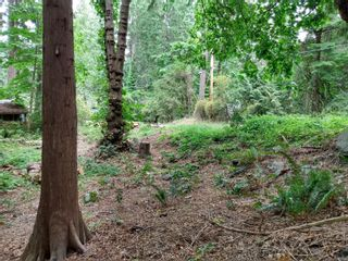 Photo 9: 99 Pirates Lane in : Isl Protection Island Land for sale (Islands)  : MLS®# 882311