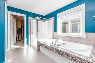 Photo 25: 169 CRANARCH CM SE in Calgary: Cranston House for sale : MLS®# C4226872