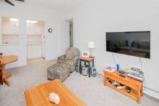 "Photo 9: 308 1450 LABURNUM Street in Vancouver: Kitsilano Condo for sale in ""KITSILANO POINT"" (Vancouver West)  : MLS®# R2227248"