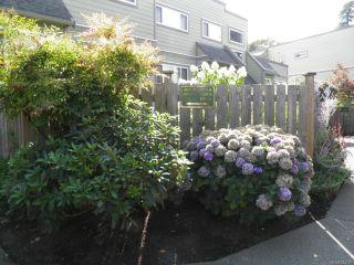 Photo 3: 102A 2250 Manor Pl in COMOX: CV Comox (Town of) Condo for sale (Comox Valley)  : MLS®# 823177