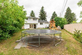 Photo 45: 28 GREER Crescent: St. Albert House for sale : MLS®# E4253444