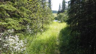 Photo 36: 5-31539 Rge Rd 53c: Rural Mountain View County Land for sale : MLS®# A1024431