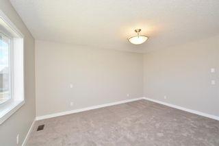 Photo 45: 52 Savanna Road NE in Calgary: Saddle Ridge House for sale : MLS®# C4119489