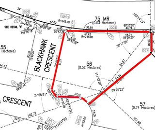 Photo 4: 56 25527 TWP RD 511A Road: Rural Parkland County Rural Land/Vacant Lot for sale : MLS®# E4191642