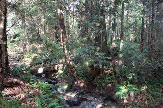 Photo 12: 5852 MARINE Way in Sechelt: Sechelt District Land for sale (Sunshine Coast)  : MLS®# R2545877