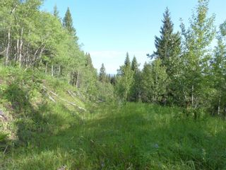 Photo 10: 224061 274 Avenue W: Rural Foothills County Residential Land for sale : MLS®# A1095002