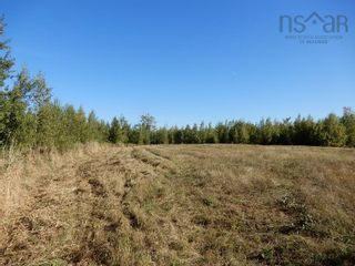 Photo 3: 40+/- acres Old Pictou Road in Hedgeville: 108-Rural Pictou County Vacant Land for sale (Northern Region)  : MLS®# 202125401