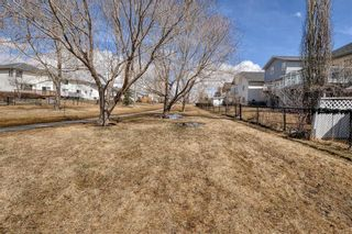 Photo 50: 152 CITADEL Manor NW in Calgary: Citadel Detached for sale : MLS®# C4294060