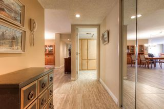 Photo 3: 301 1229 Cameron Avenue SW in Calgary: Lower Mount Royal Apartment for sale : MLS®# A1095141