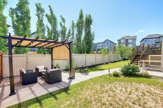 Photo 46: 143 STONEMERE Green: Chestermere Detached for sale : MLS®# A1123634