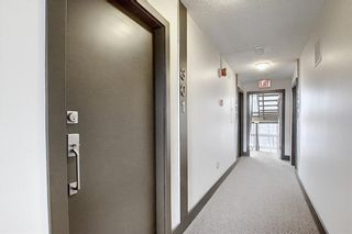 Photo 31: 301 1709 19 Avenue SW in Calgary: Bankview Apartment for sale : MLS®# A1084085