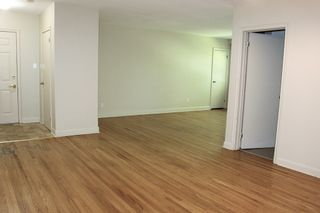 Photo 19: 19 N Elgin Street in Port Hope: Other for sale : MLS®# 40023304