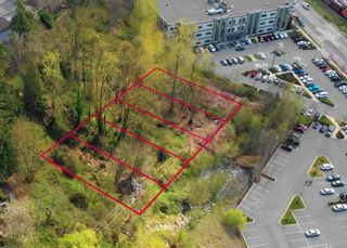 Photo 4: Lt.4 CAMPBELL Avenue in Abbotsford: Central Abbotsford Land for sale : MLS®# R2618714