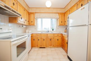 Photo 18: 4111 107A Street in Edmonton: Zone 16 House for sale : MLS®# E4249921