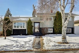 Main Photo: 101 Farnham Drive SE in Calgary: Fairview Detached for sale : MLS®# A1077143