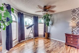Photo 28: 226 Canoe Drive SW: Airdrie Detached for sale : MLS®# A1129896