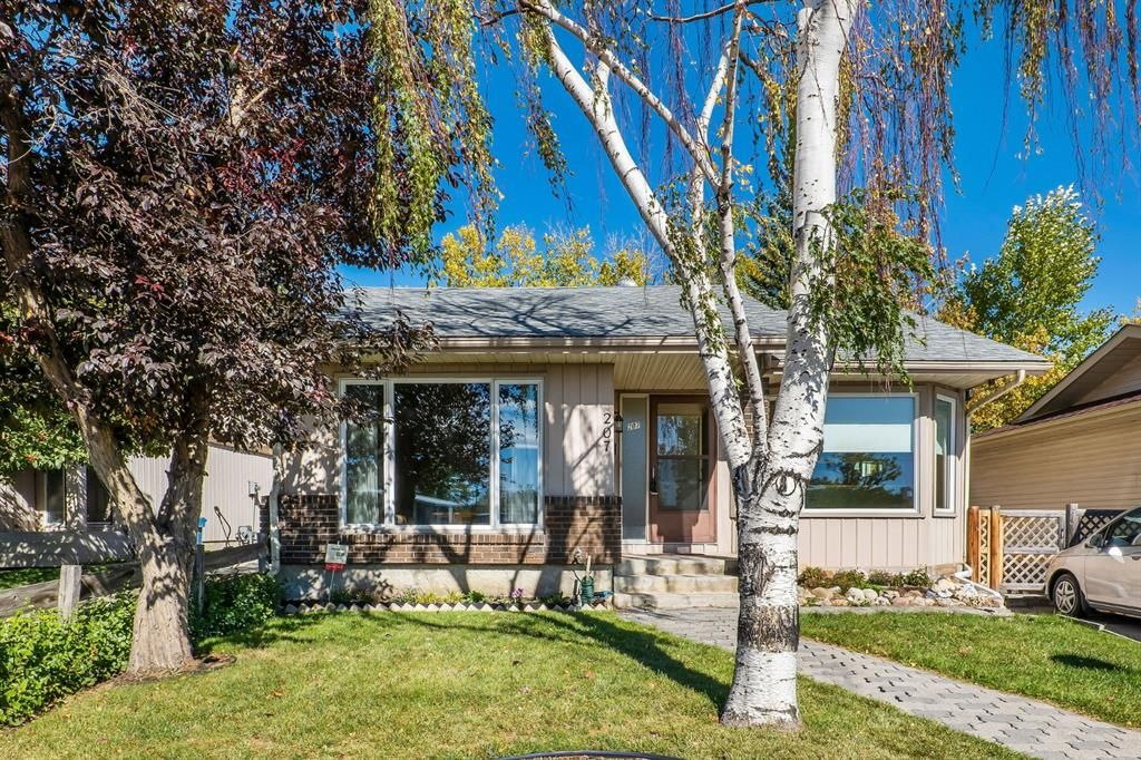 Main Photo: 207 Radcliffe Place SE in Calgary: Albert Park/Radisson Heights Detached for sale : MLS®# A1149087