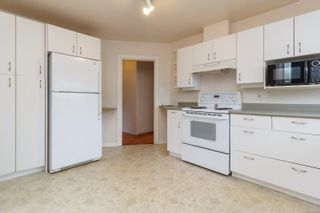 Photo 12: 966 Lovat Ave in : SE Quadra House for sale (Saanich East)  : MLS®# 866966
