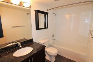 Photo 15: 303 4455A Greenview Drive NE in Calgary: Greenview Apartment for sale : MLS®# A1049950