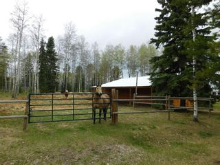 Photo 42: 84078 Highway 591: Rural Clearwater County Detached for sale : MLS®# A1111743