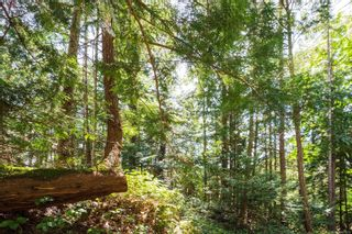 Photo 9: 9904 Castle Rd in Pender Island: GI Pender Island Land for sale (Gulf Islands)  : MLS®# 876033